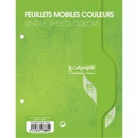 Feuille simple vert Clairefontaine 17x22 grand carreaux 80g - sachet de 50
